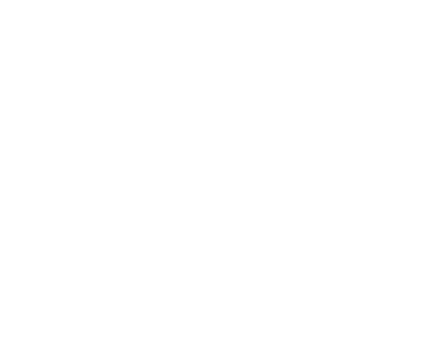 Transferrable Skills Icon
